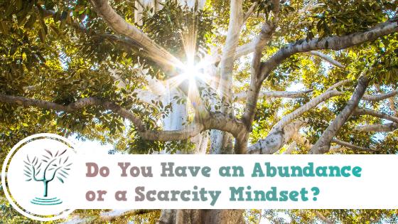 ✅⛔Do You Have an Abundance or Scarcity Mindset?
